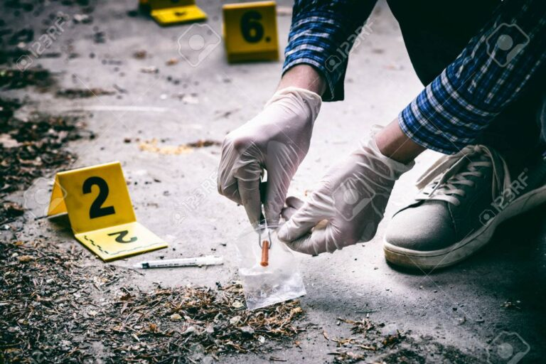 In less than 24 hours, seven homicides were registered in the state of San Luis Potosi